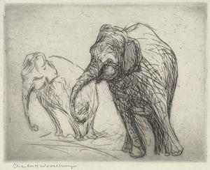 Elephants (Two)