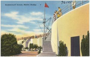 Architectural beauty, Marine Studios