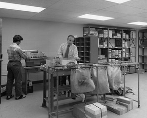 Employees sort mail in mail room