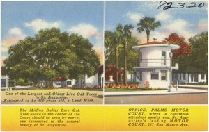 Office, Palms Motor Court, where a courteous attendant awaits you, St. Augustine's leading motor court, 137 San Marco Ave.