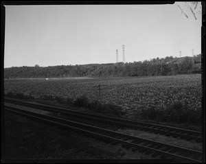 Train tracks with utility poles in background